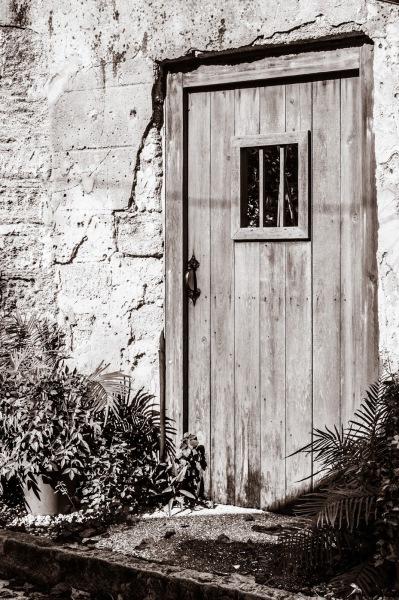 AVILES ST. DOOR in SEPIA  - Sandy Gilbert
