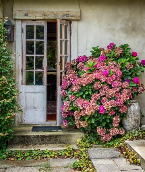 "OPEN DOORS  - Mary Hulett      ""BEST IN SHOW"""