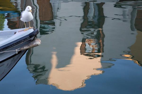 REFLECTING - Darryl Patrick