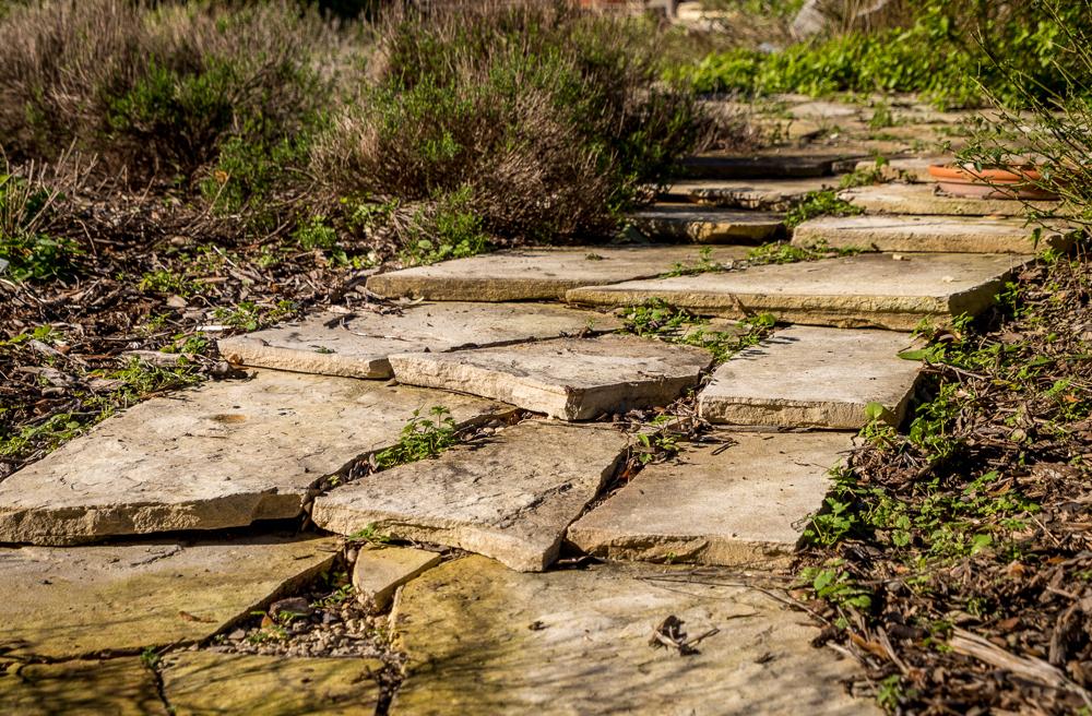 Assignment - Garden Stairs - Mary Hulett