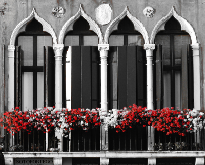 B&W - Oglive Garden - Darryl Patrick