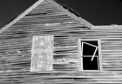 """""""Open Window"""" Darryl Patrick"""