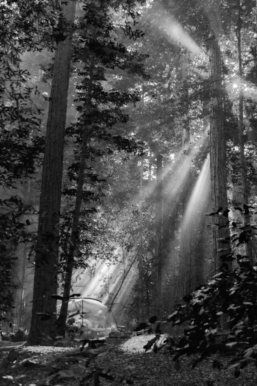 """""""Morning Light Big Sur"""" Dennis deeny"""