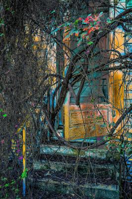Orange Door - Ralph Nordenhold