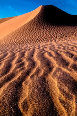 """Dark Side of the Dune"" - Jerry Kloehr"