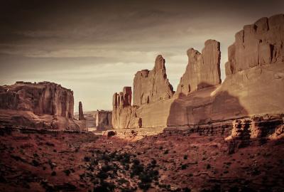 """""""Desert Pinting"""" - David Goodge"""