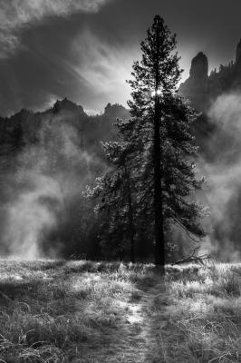 """Yosemite Sunburst"" - Jerry Kloehr"