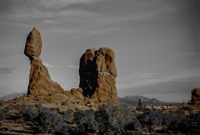 """Desert"" - David Goodge"
