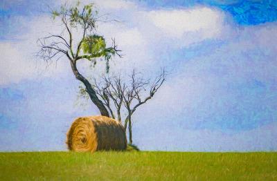 """Hay Field"" - Ralph Nordenhold"