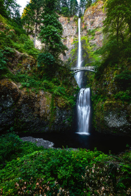 """Multnoma Waterfall"" - Dennis Deeny"