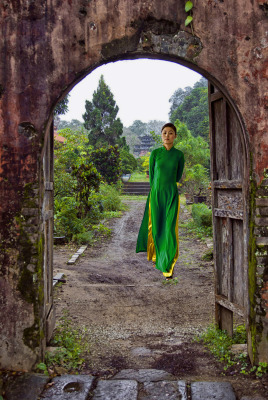 """Vietnamese Garden"" - Dennis Deeny"