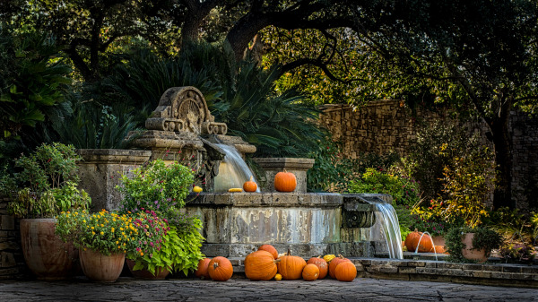 """""""Fall Bounty"""" by Ralph nordenhold"""