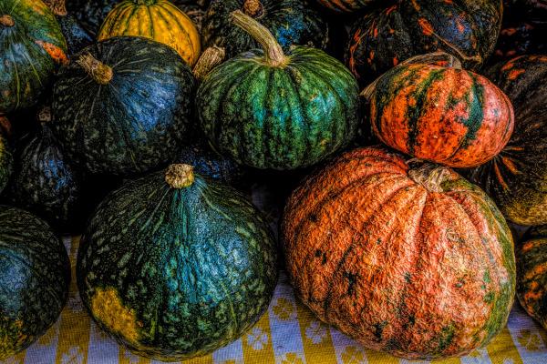 """Fall Harvest"" by Dennis Deeny"