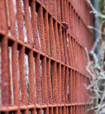 """Color Design in Rust"" - Dale Wood"