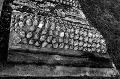 """Shells"" - Ralph Nordenhold"