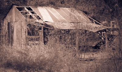 """Old Homestead"" - Dale Wood"