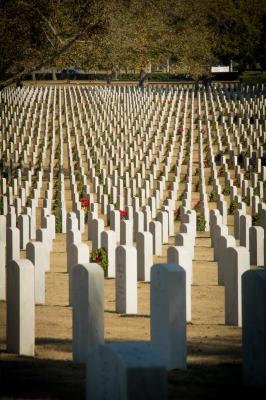 """""""Arlington National Cemetery"""" - John O'Connor"""