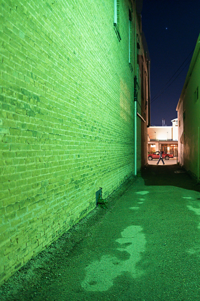 """Green Alley"" by Holly Thompson"