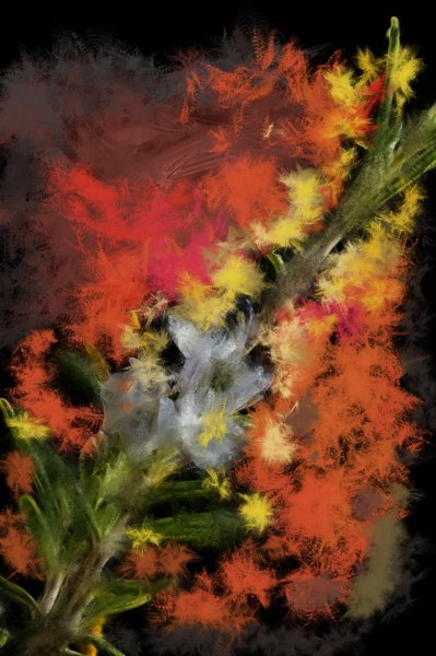 Firebrand by Ralph Nordenhold