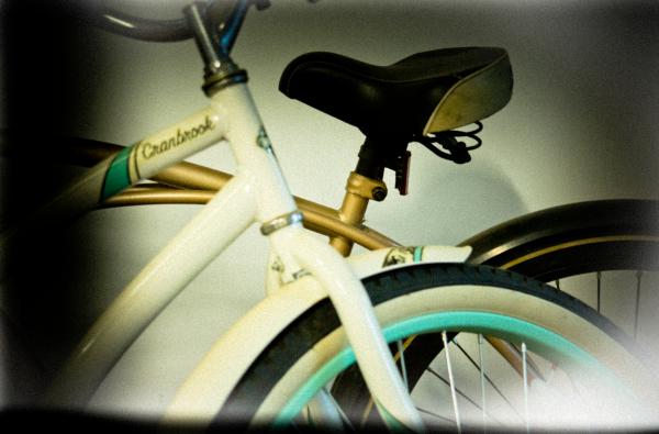 Holga Bikes by David Goodge