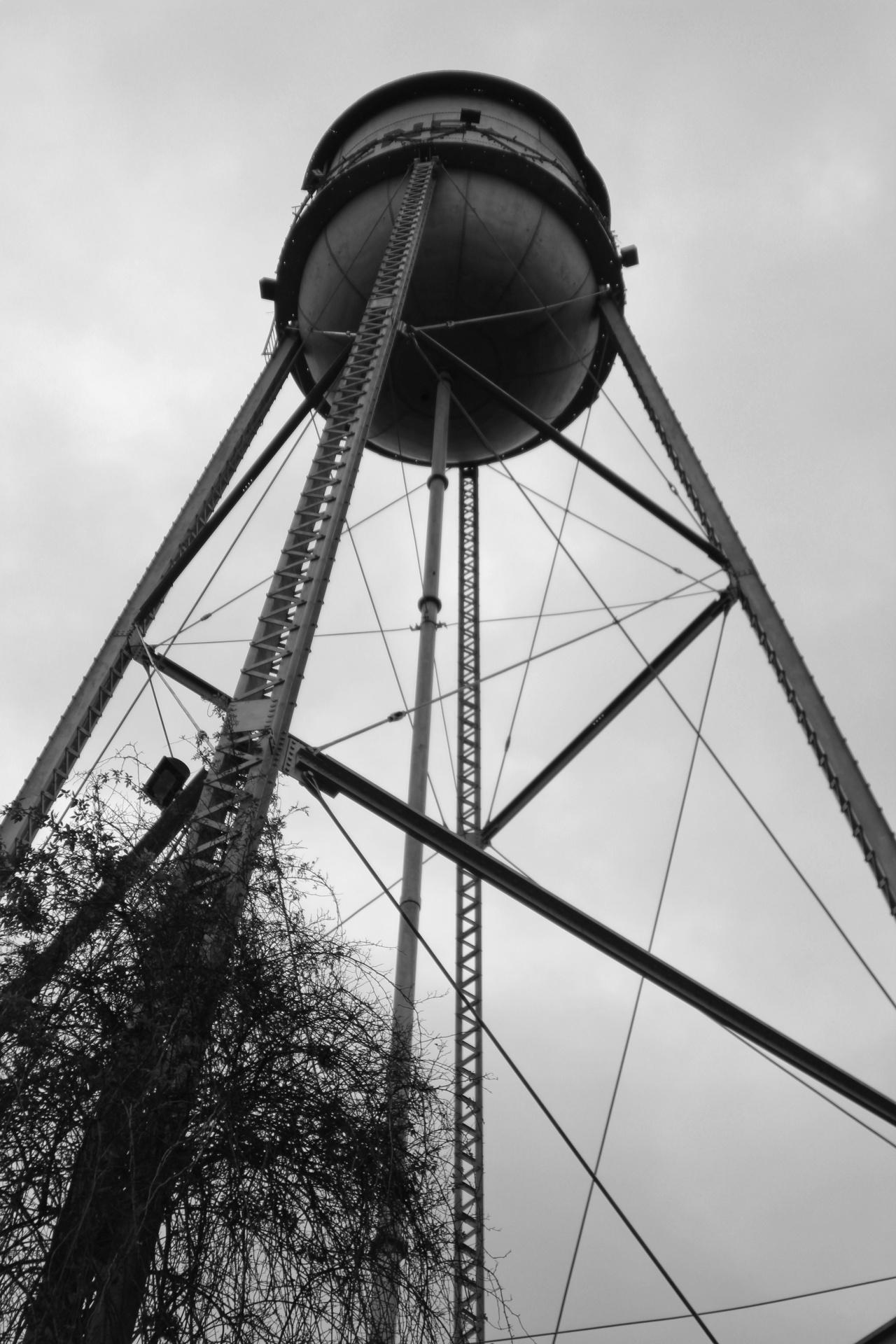 Gruene Tower Rising by Melissa Onks
