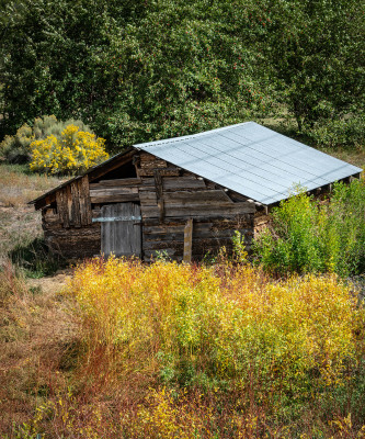Autumn in New Mexico by Sandy Gilbert