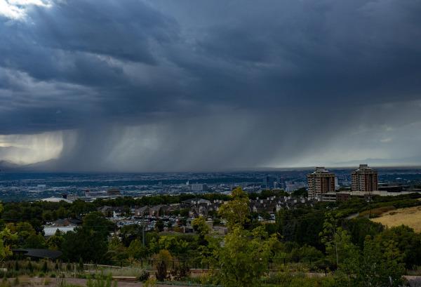 Salt Lake City Skyline by Sharon Deeny