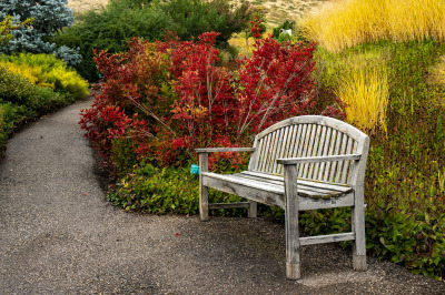 """Resting Spot"" by Sharon Deeny"
