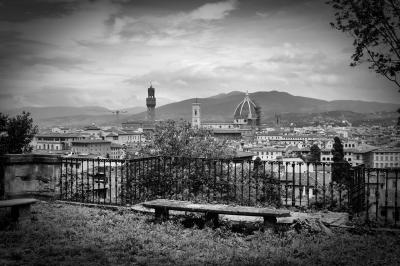 """""""Florence"""" by Darryl Patrick"""