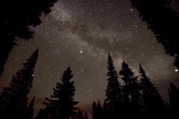 """Under the Night Sky"" by Rhodes Smartt"