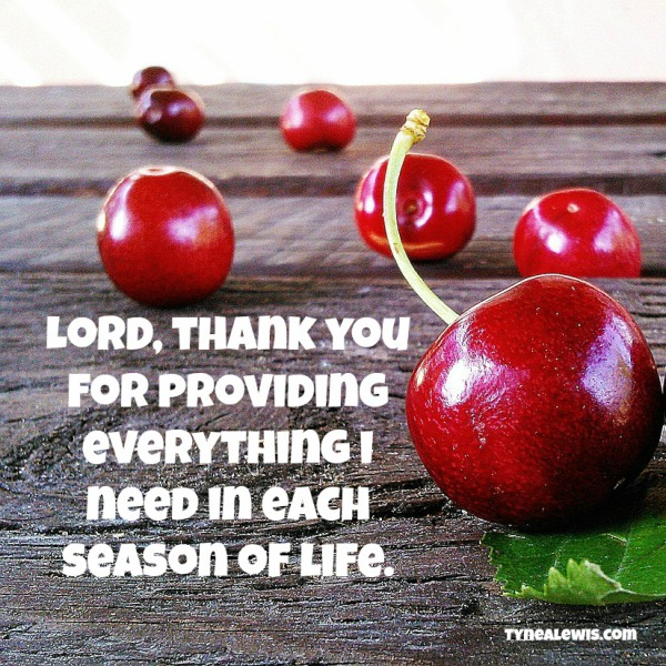 Lord, thank you for providing everything I need in each season of life.
