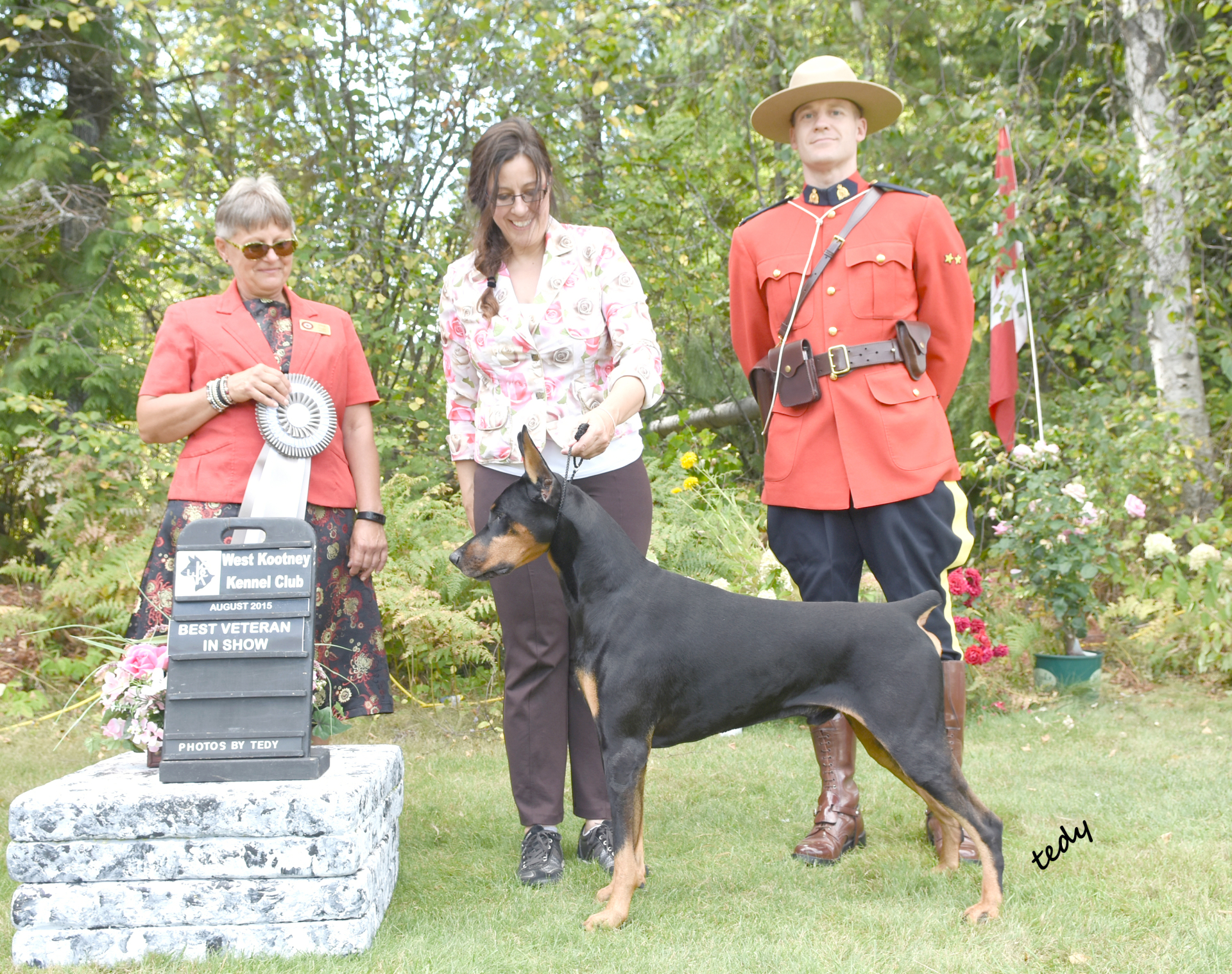 BVIS win under Doberman Breeder Judge Wendy Maisey!