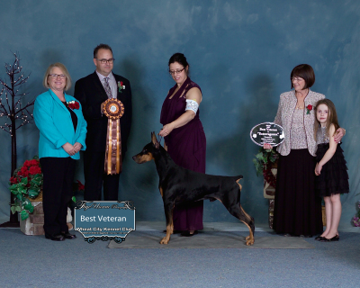 Veterans Extravaganza, Wheat City Kennel Club Dog Show, Brandon, MB