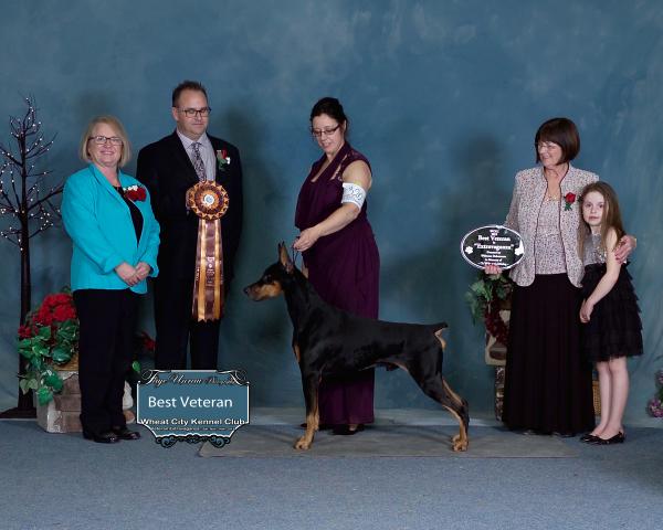 Veterans Extravaganza, Wheat City Kennel Club Dog Show, Brandon, MB