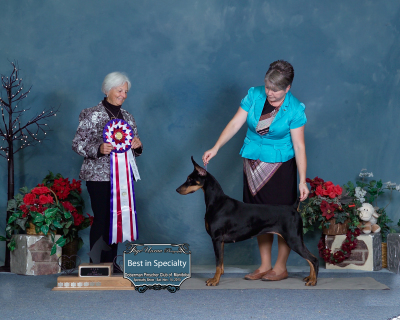 Elphie wins the Doberman Pinscher Club of Manitoba's Specialty!