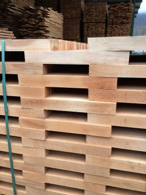 Beech Timber Details