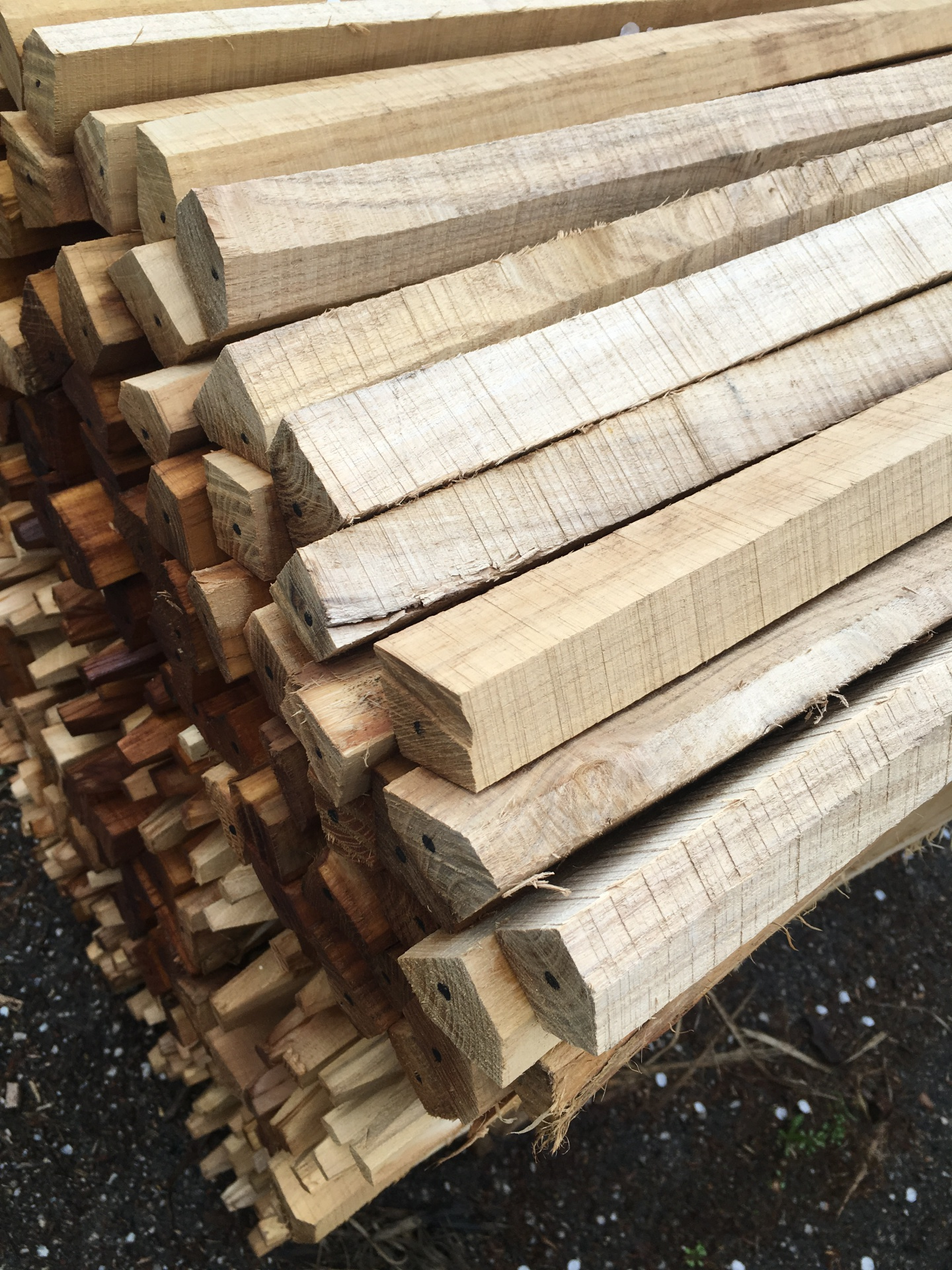 Hardwood Robinia Stakes Pegs