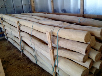 Robinia Playrounds Poles Posts Hardwood