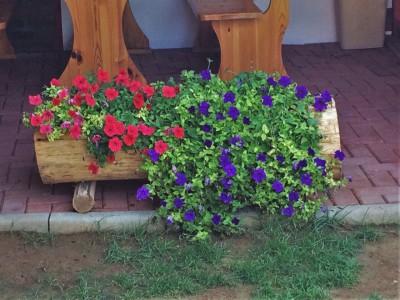 Hardwood Robinia Planter Rustic