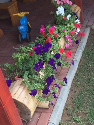 Rustic Hardwood Robinia Planter