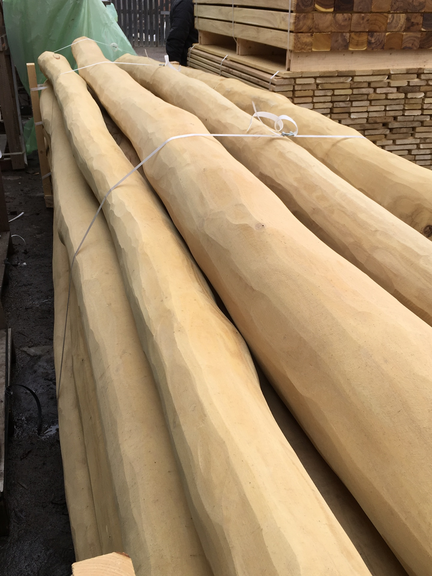 Robinia Playground Poles Timber