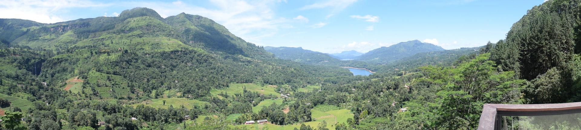 Capoeira Sri Lanka, Capokolam, Sri Lankan Tamils, Tea Plantation