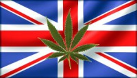 Legalising cannabis UK 'would raise hundreds of millions
