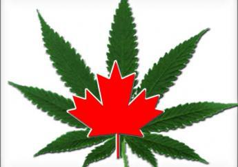 Canada's new governing party promises to legalize, regulate marijuana sales