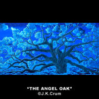 """The Angel Oak At Night"" gentle surrealism by J. K.Crum"