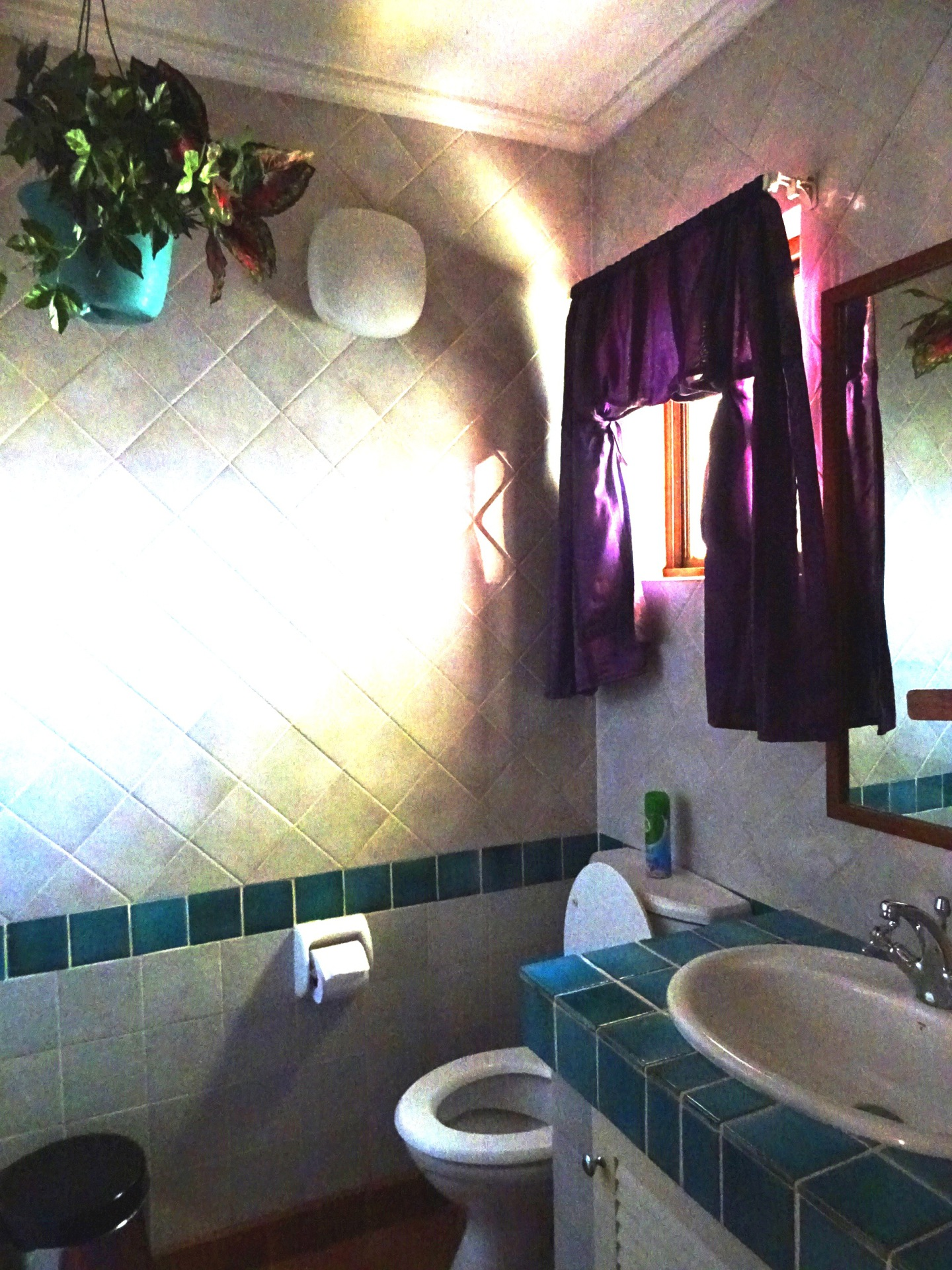 Main en-suite bathroom with shower - Holiday rental Hartbeespoort dam