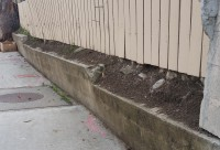 Retaining-Wall-Failure-Repairing-Solutions