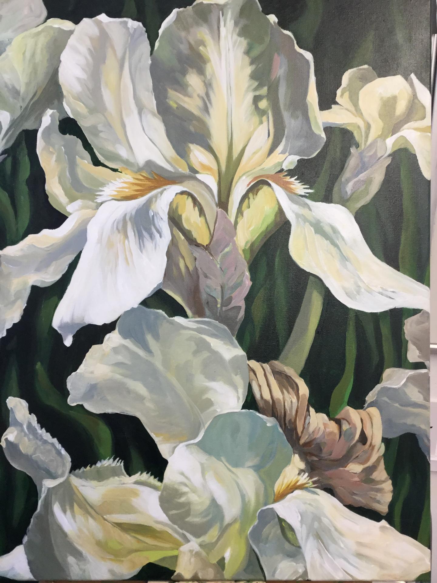 Large Irises