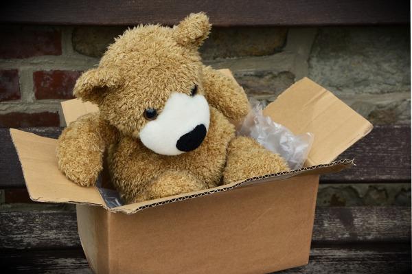 Bear In A Box