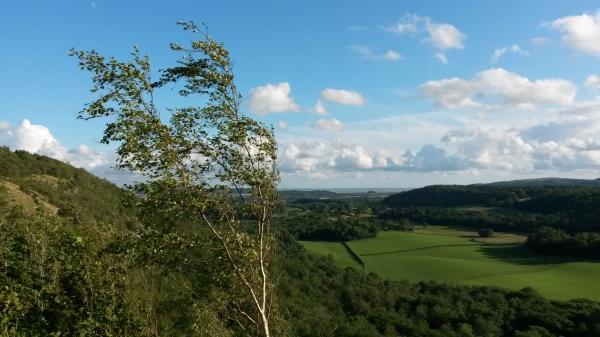 Whitbarrow, cumbria, witherslack, view, walk, wood, workshop, beautiful